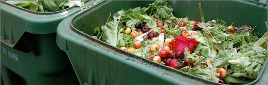Organic-Recycling