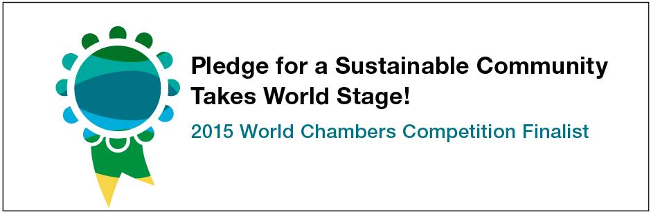 Pledge enters world stage