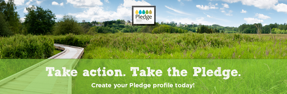 Take action. Take the Pledge.